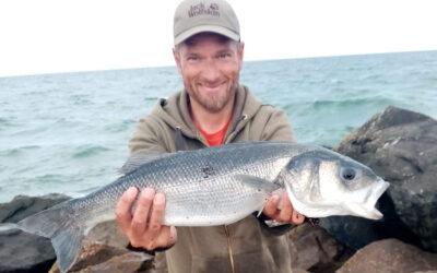 Stabilt havbarsfiskeri