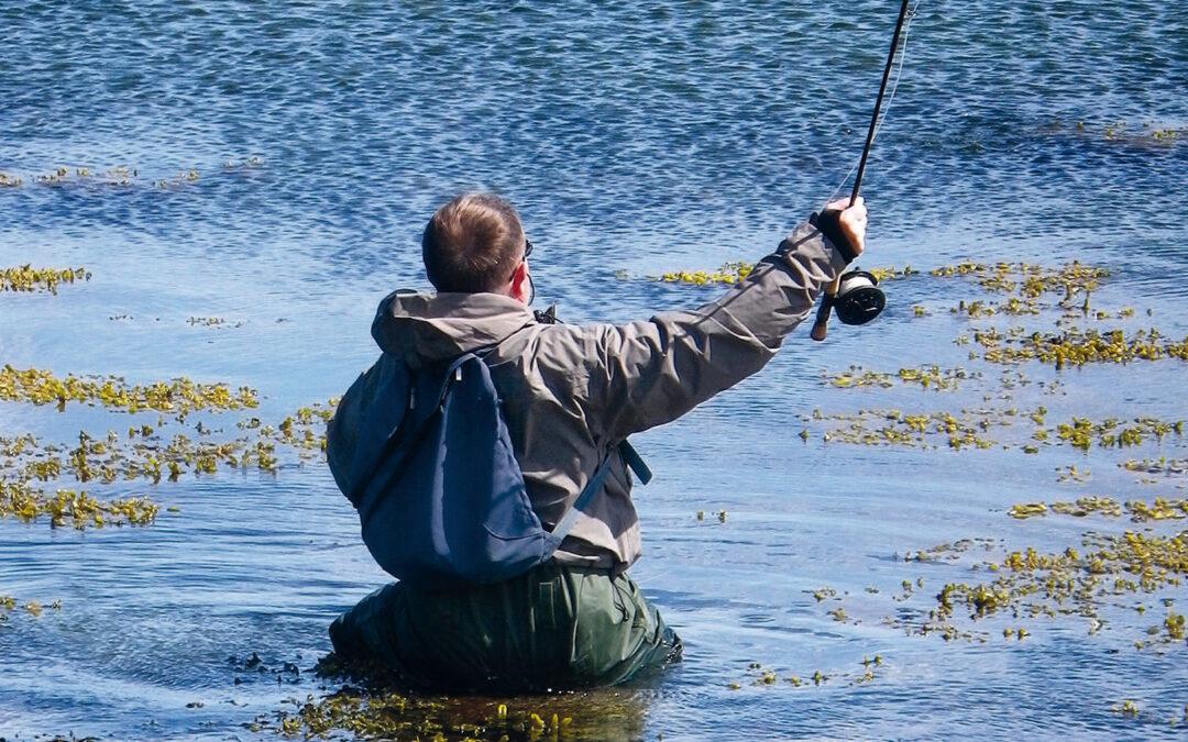 Havørredfiskeri på Djurslands kyst