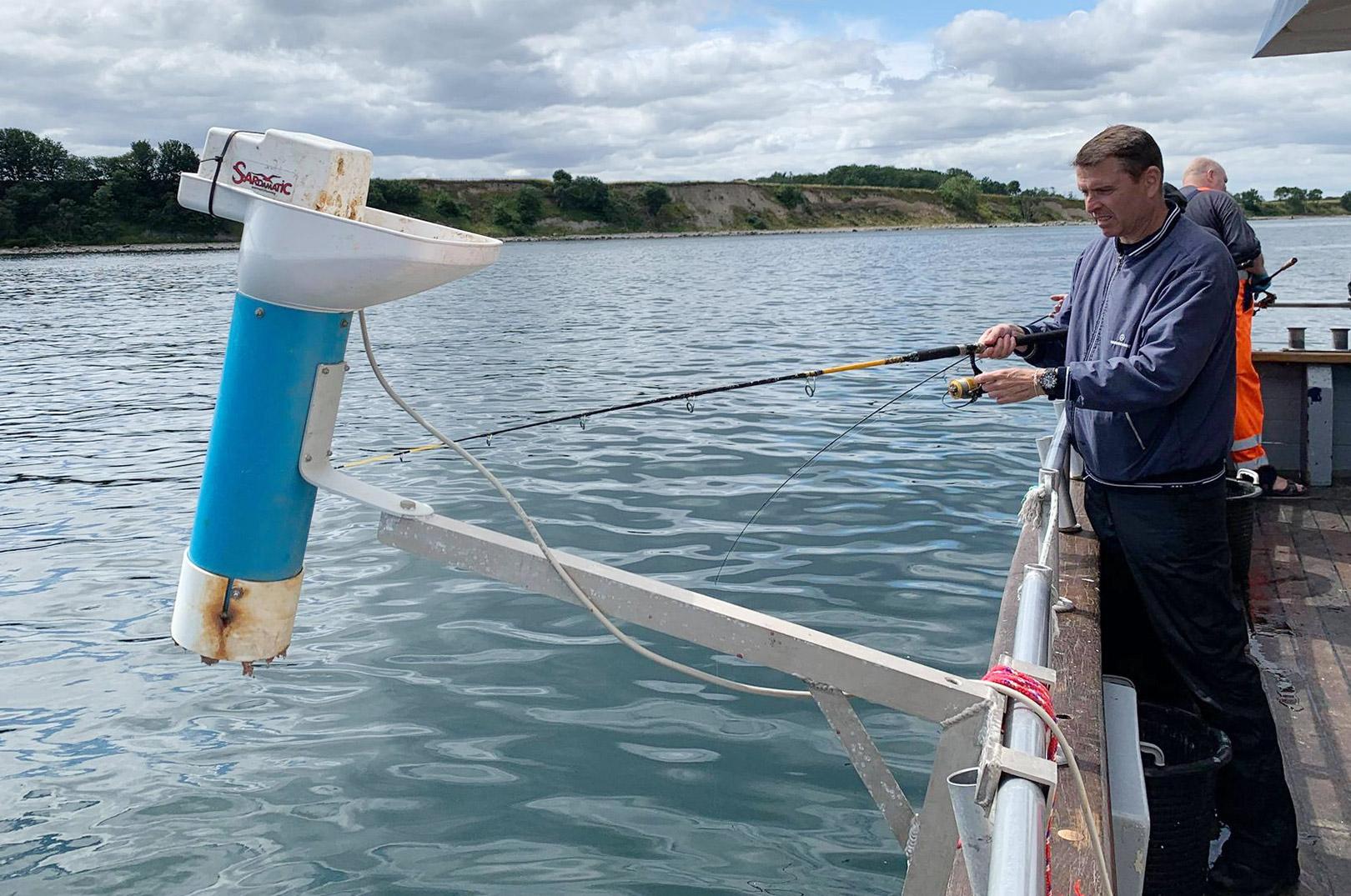 """Der """"chummes"""" lystigt på Øresund - og teknikkerne til at lokke makrelstimerne tæt på bådene bliver mere og mere avancerede."""