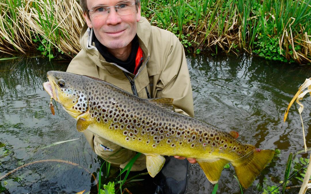 Jens Bursell med en flot bækørred taget på en Mepps str 3 fisket med Claw Connector