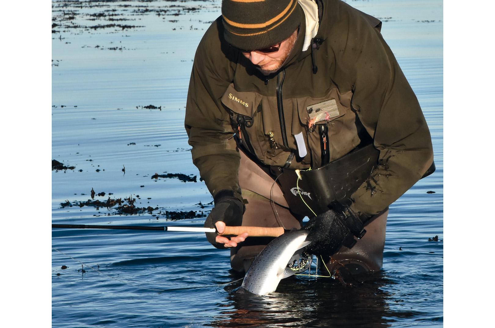 Her er det Rene, der har fundet en fin halvmeters fisk, som var del af en større flok fisk, der kortvarigt kom ind på pladsen i overgangen mellem det dybe, og så Kløverhagens store spændende flade plateau med mange fine tangbuske.