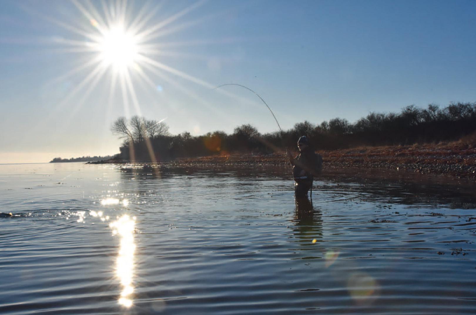 Kløverhagen lige syd for Tårup indbyder ofte til at vade langt ud og fiske mod den dybere kant, men ofte kan du fint finde flotte fisk helt under land mellem tangbuskene på kun knædybt vand.