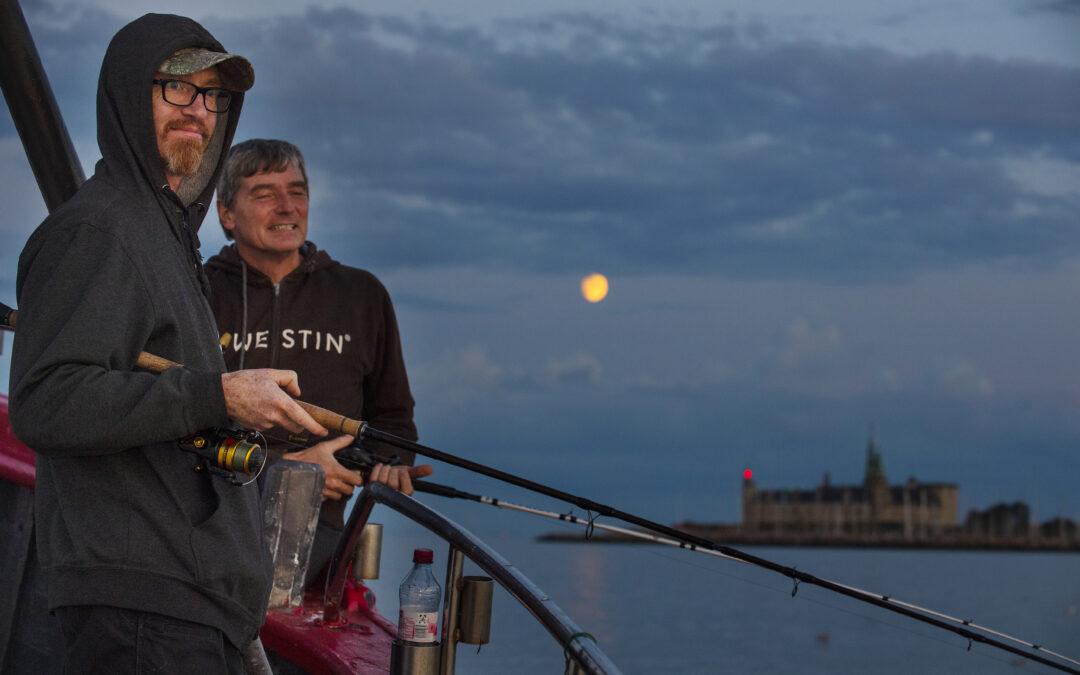 Søren Beck og Niels Godsk Jørgens nyder månen stå op over kronborg ombord på Fyrholm. Og hvarrer - dem var der masser af.