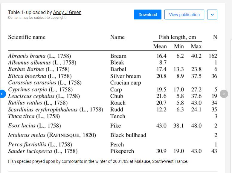 Her kan du se en af de mange undersøgelser der er lavet på skarvens føde, som typisk viser at skarven typisk spier det der er mest af - typisk fredfisk. Derfor vil skarven ofte påvirke vandkvaliteten positivt.