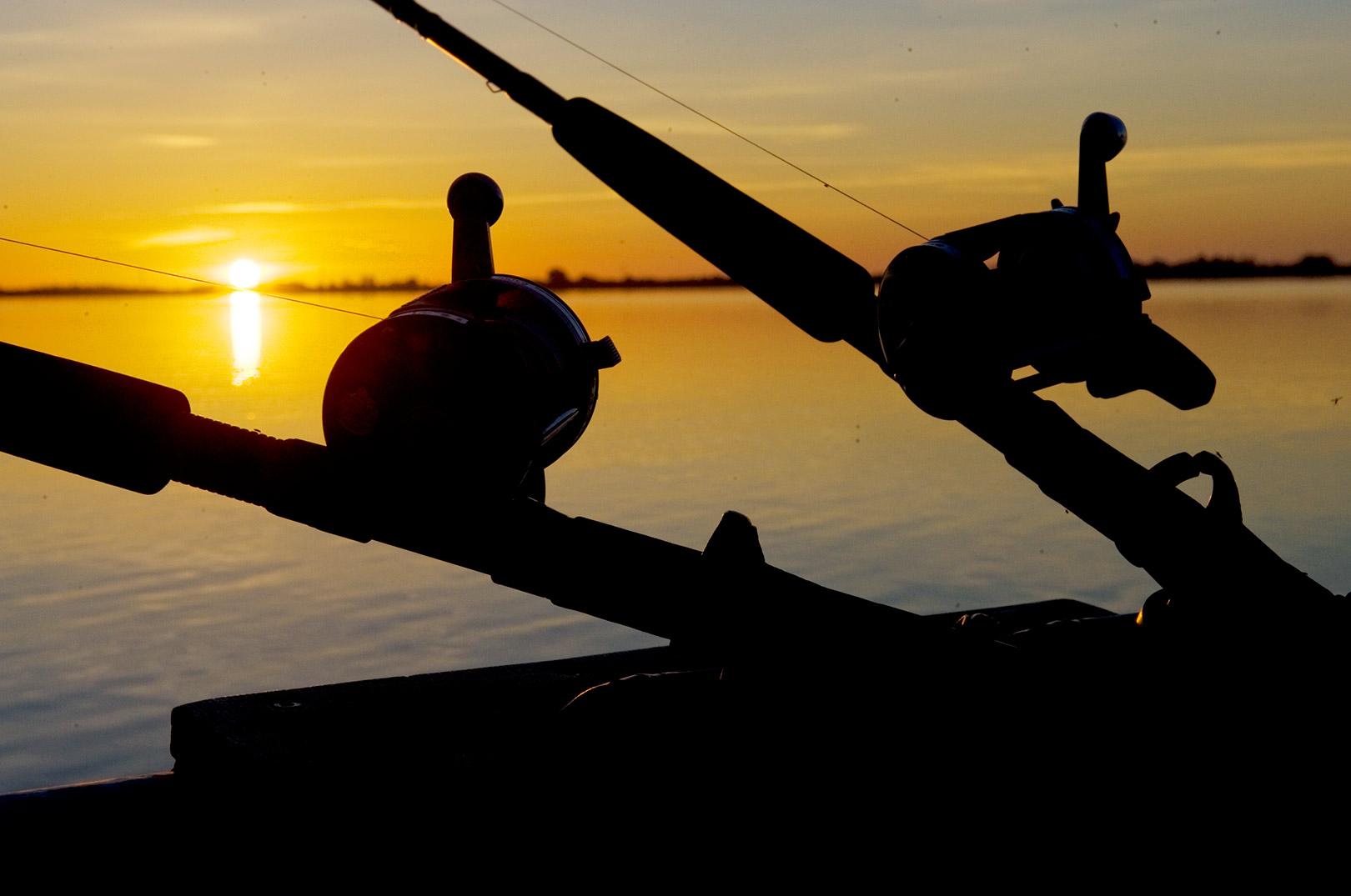 Meget tyder på at erhvervsfiskeriet i Tissø kan have haft negative indflydelse på søens økologiske tilstand. Når det er sagt, er det vigtigt at erkende at et for højt fiskepres fra lystfiskere også kan have en negativ effekt på fiskebestanden. Set i et samfundsøkonomisk perskepktiv er der dog ingen tivl om at flest mennesker for glæde af vores skrøbelige ressourcer på søerne ved at lukke erhvervsfiskeriet - og istedet fokuseret på at drive et skånsomt og bæredygtigt lystfiskeri til glæde for bredden i den danske befolkning.