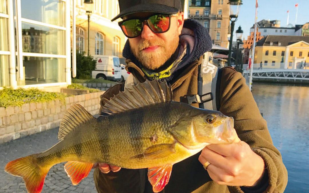 At fange smukke fisk som denne midt i byen, er en oplevelse alle lystfiskere burde unde sig selv.