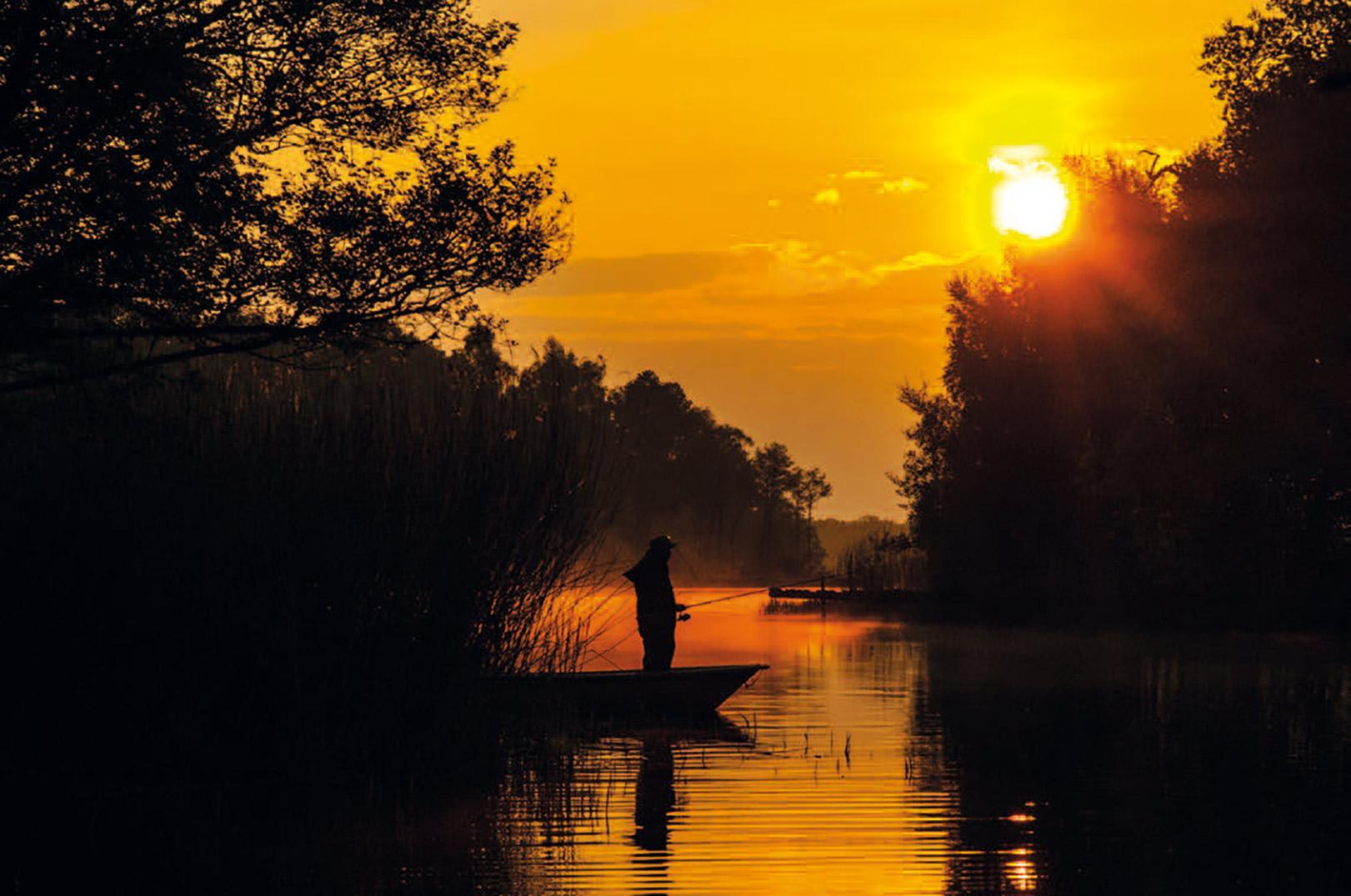 Den gyldne time er kvalitets fisketid, hvor aborrerne ofte er i hugget.