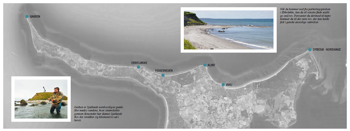Her kan du se nogle af de bedste pladser til havørred på den nordvestsjællandske kyst.