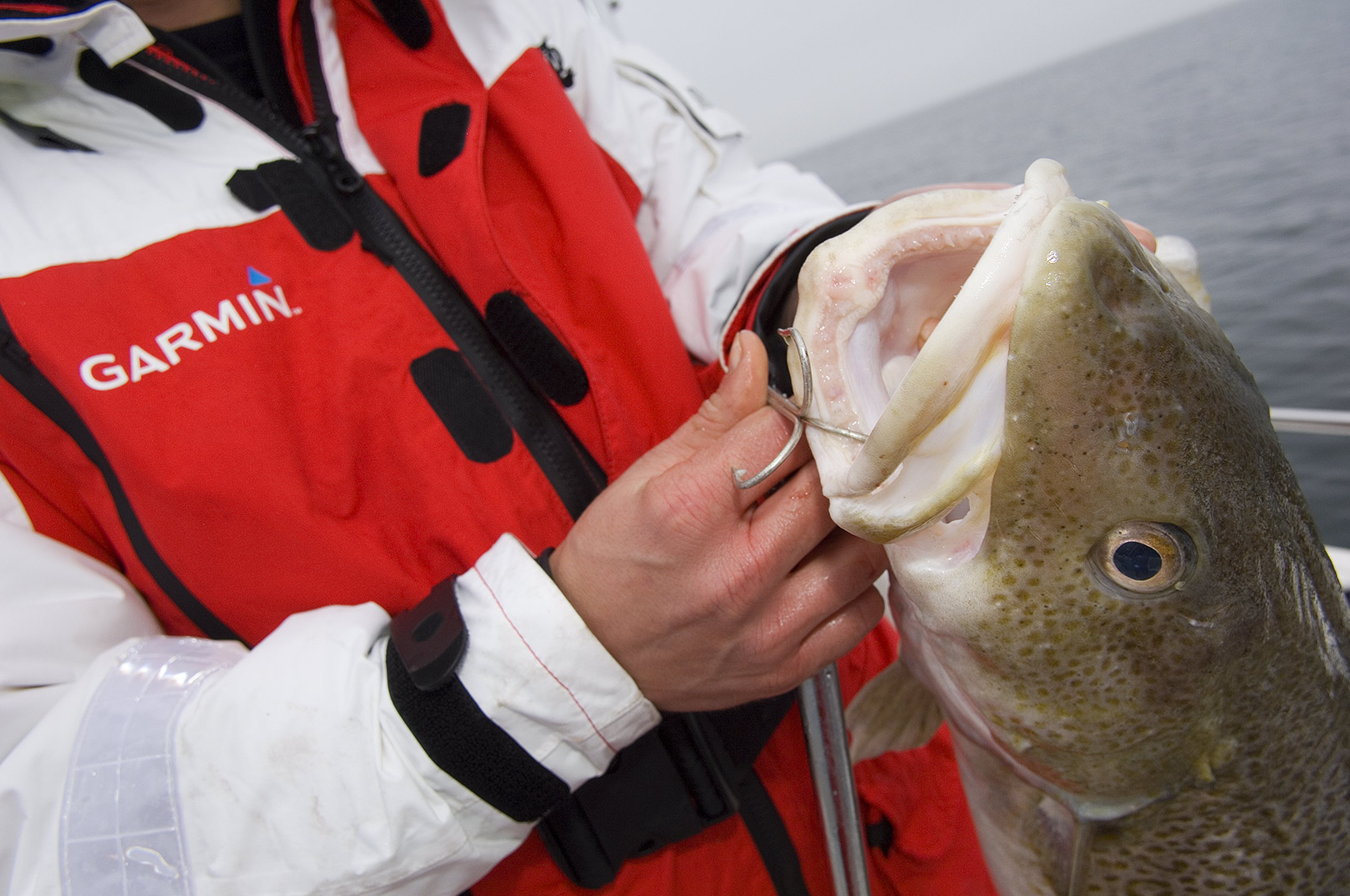 Kun cirka halvdel af de danske lystfiskere er organiseret i DSF. Hvis ikke en langt større procentdel af de danske lystfiskere kommer ind under DSF i den kommende tid, hvor der er kommet nye kræfter til bestyrelsen, vil det være oplagt at man også lader andre grupper af lystfiskere få en plads i §7 udvalget, så de også bliver hørt. Hverken Dansk Havfiskerforbund eller De Danske Småbådsklubber er repræsenteret i §7 udvalget.