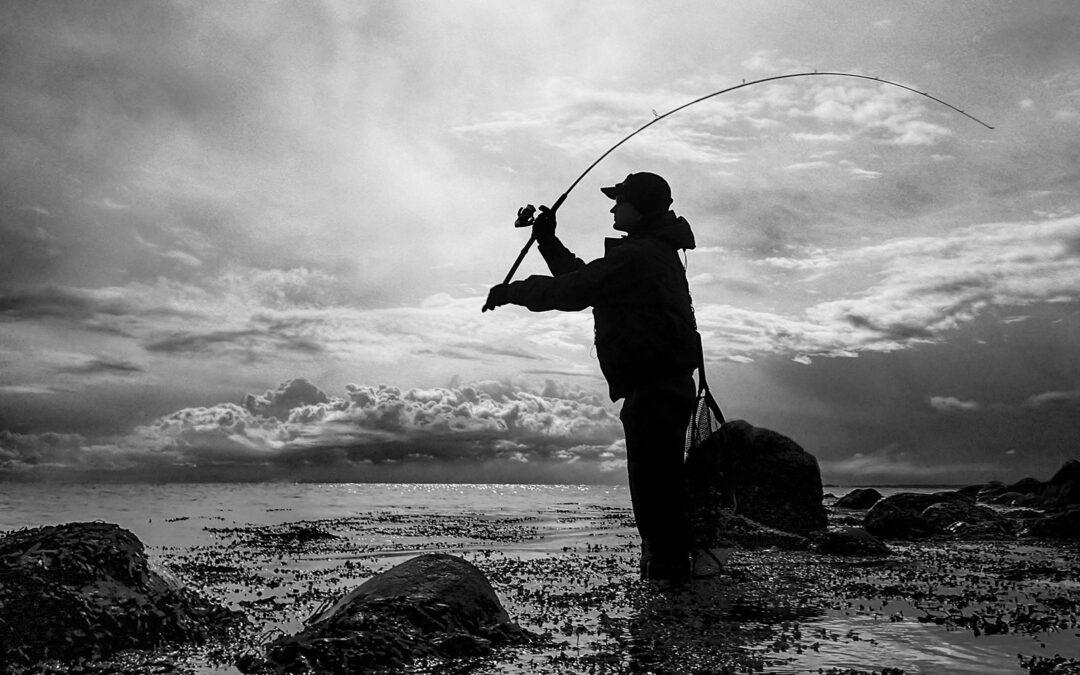 Kystfiskeri efter havørred i Kalundborg Fjord.