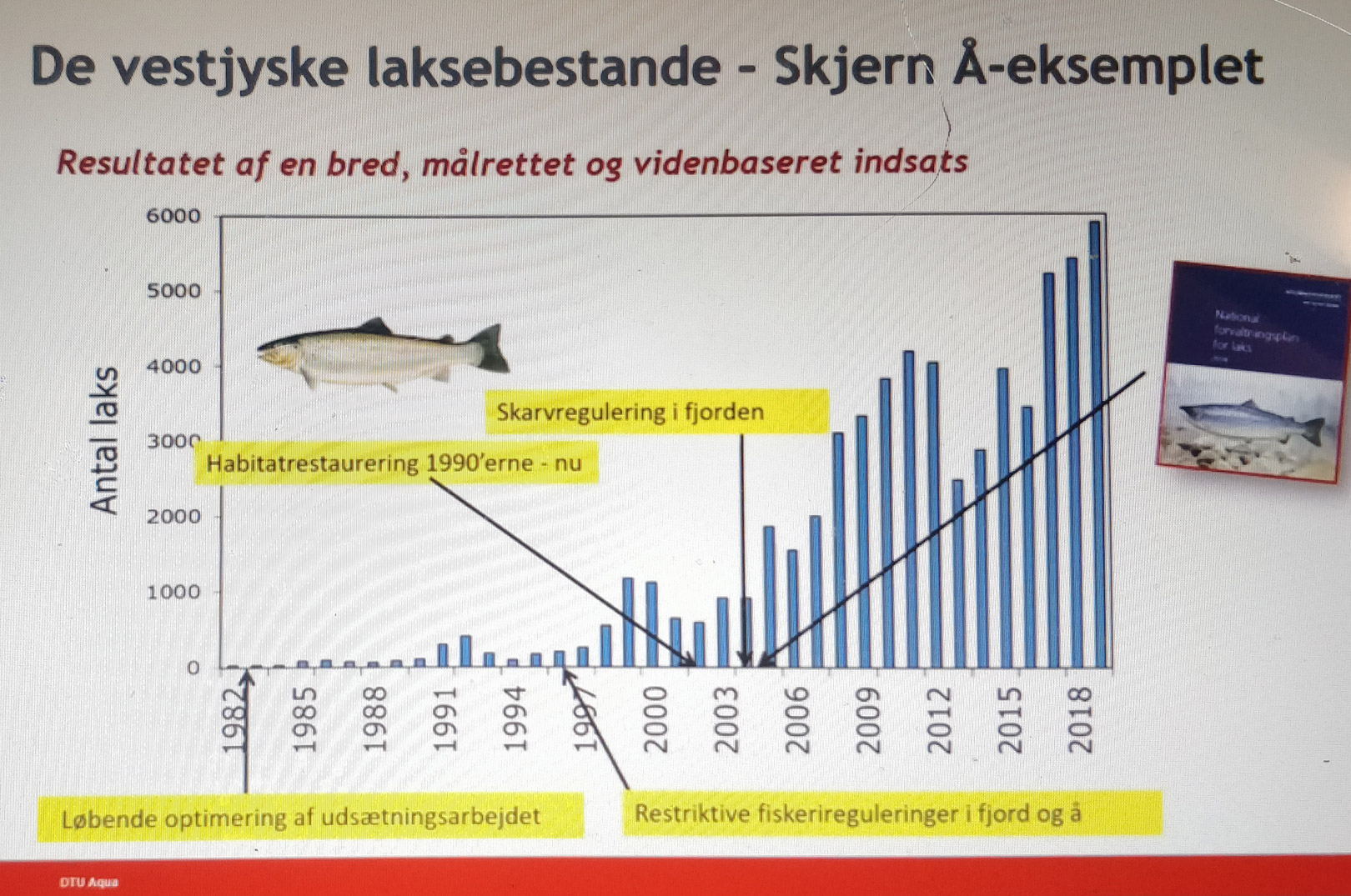 Her kan du se et af de mange slides fra Anders Koeds konklusioner omkring Den Store Lakseundersøgelse.