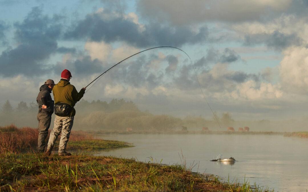 Lystfiskeroplevelser på kysten med havørred for enden af fluelinen