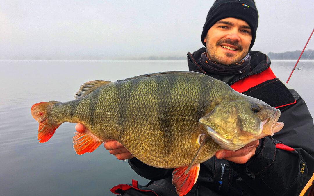 Mikkel Matzen med en prægtig aborre på langt over to kilo.
