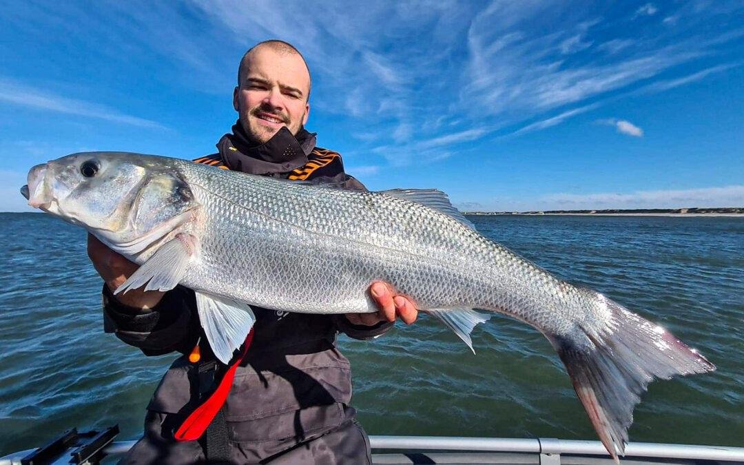 Havbarssæsonen bød på masser af store fisk til Mikkel Matzen - helt op til 75 centimeter.