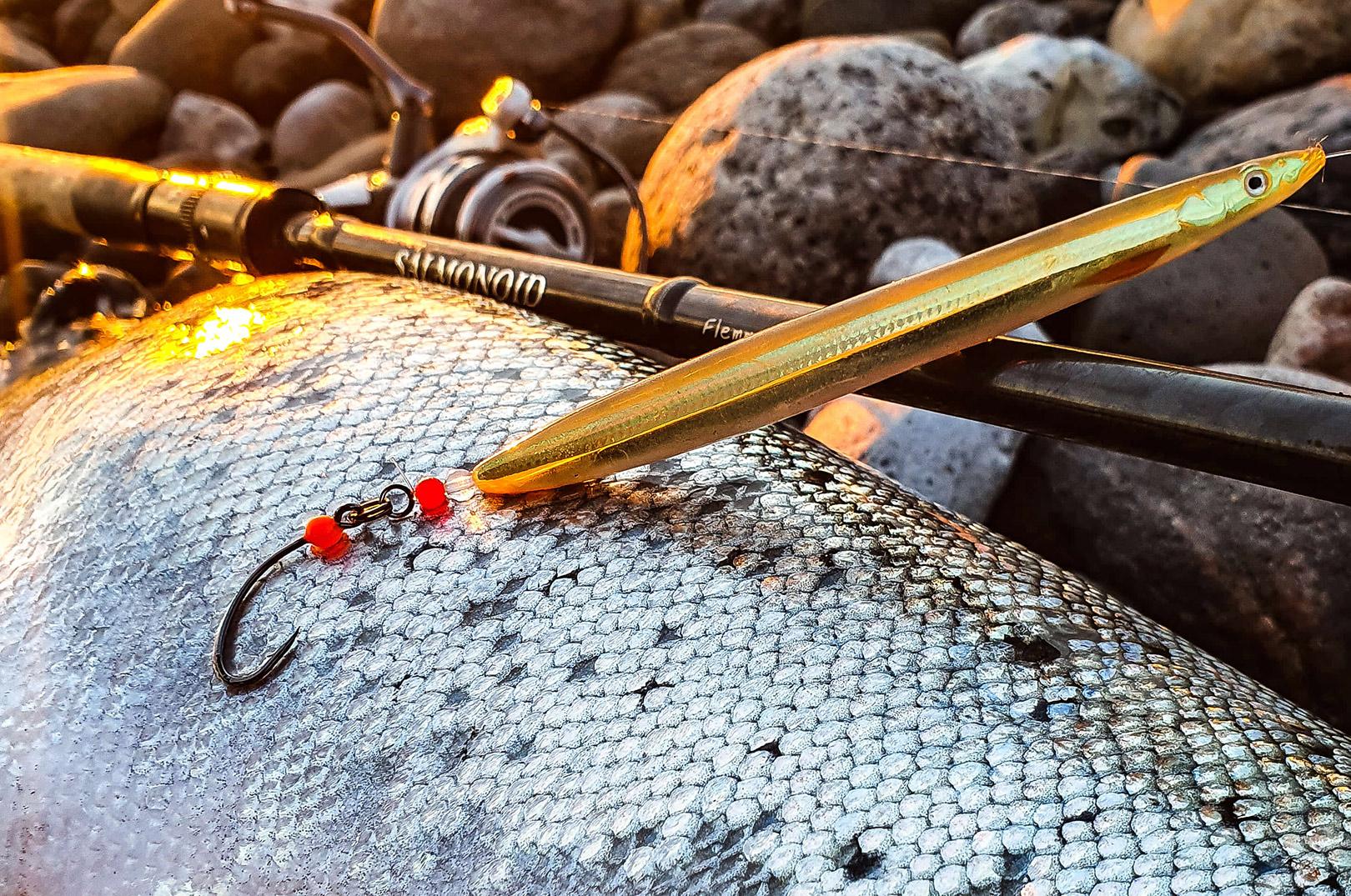 Flemmings flotte havørred huggede på en Sandeel i farven motoroil fisket md de nye SGY-kroge med indbygget hugpunkt.