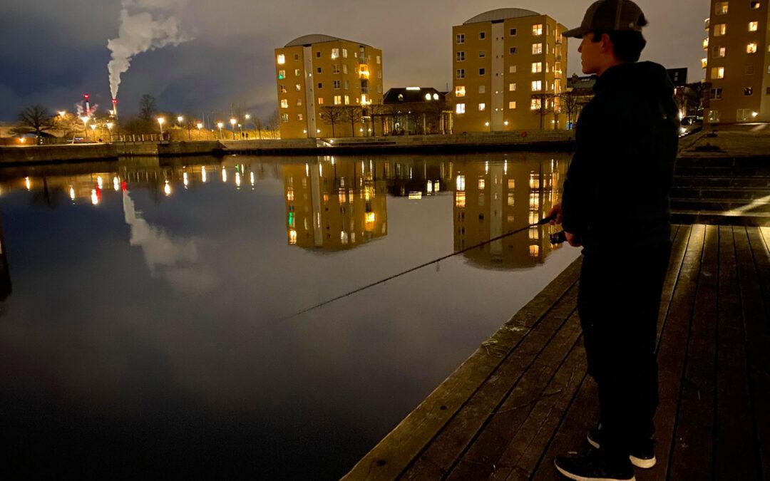 Fiskeriet i Københavns Havn er spektakulært efter mørkets frembrud.