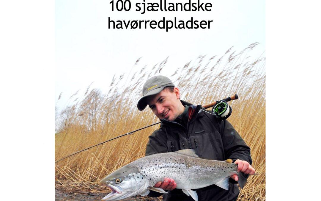 Sjællandske kystpladser af Rasmus Ovesen