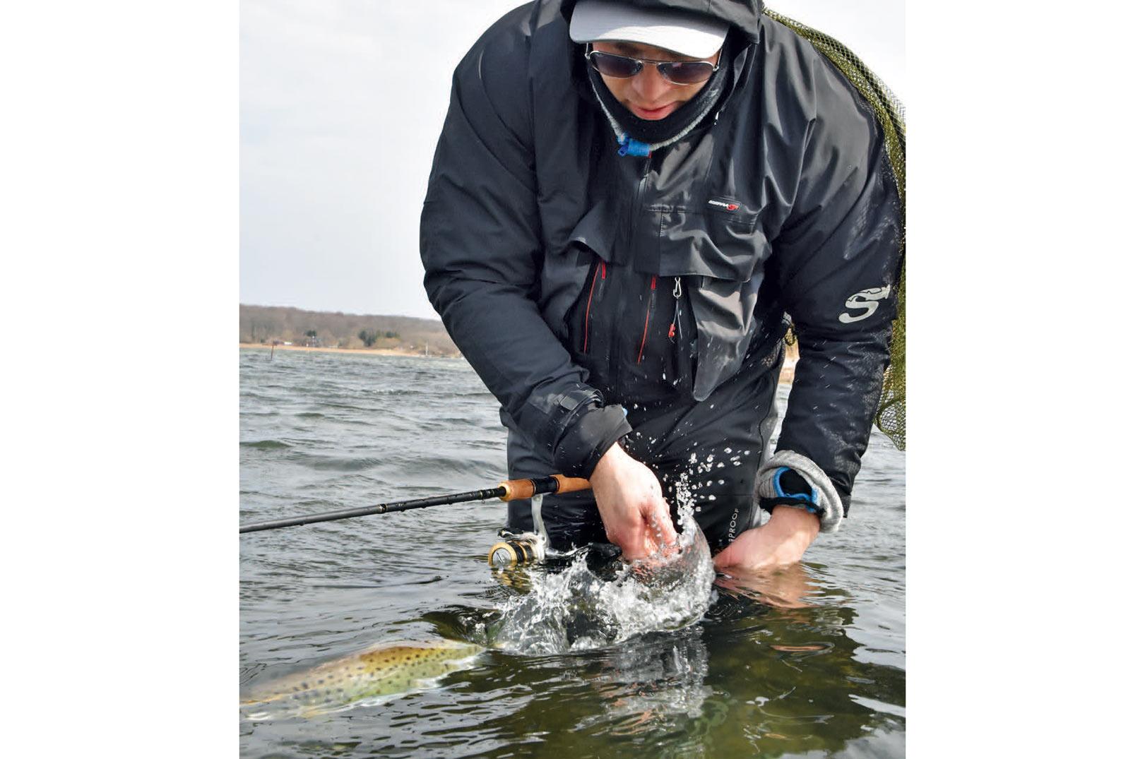 En smuk ørred på vej tilbage i rette element. I området omkring Torø er der en hel del fisk at finde året rundt, men husk at gemme lidt til næste gang.
