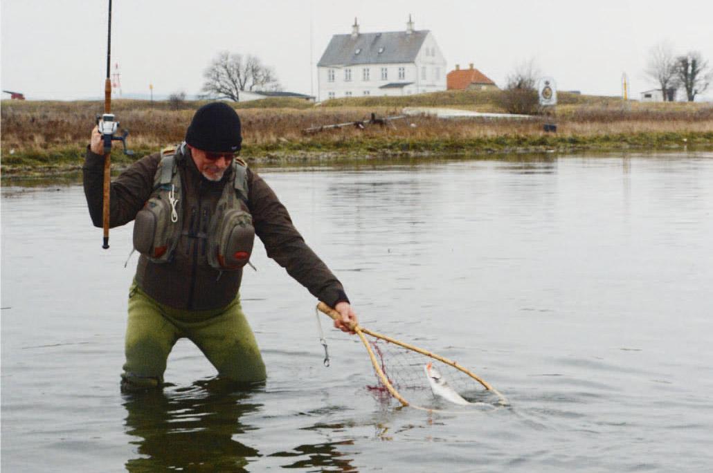 """Vinterfiskeri er ofte ensbetydende med fiskeri efter """"Grønlænderne"""". Når man først finder stimerne, er der mulighed for at gøre gode fangster."""