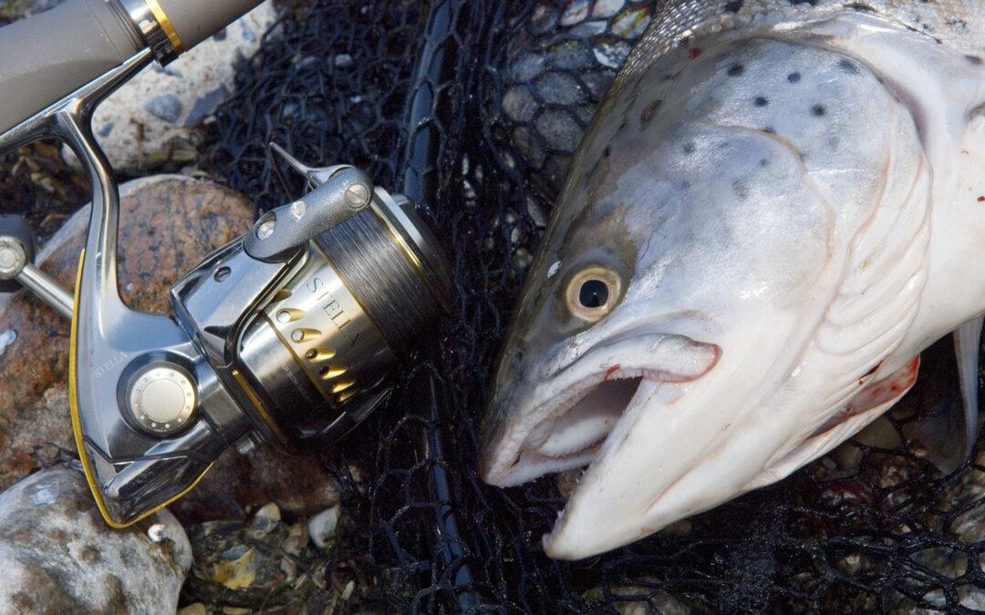 HVOR ER FISKERIKONTROLLEN?
