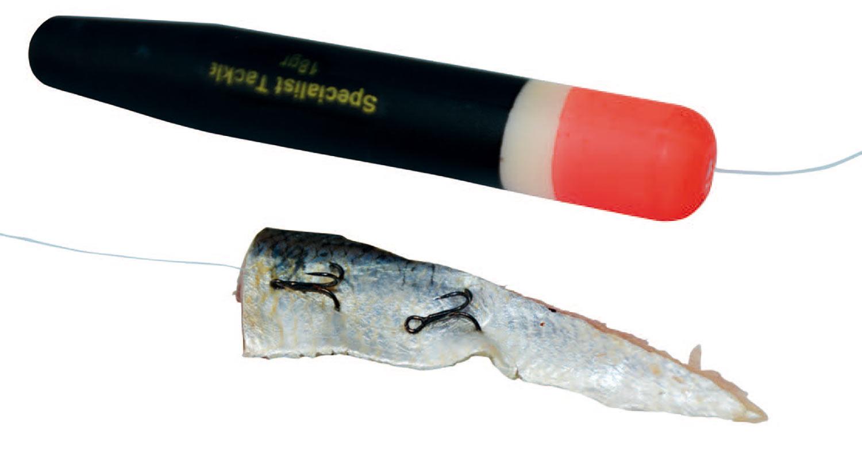 En flådfisket fiskestrimmel er god til makrel, hornfisk, havørred og havbars.