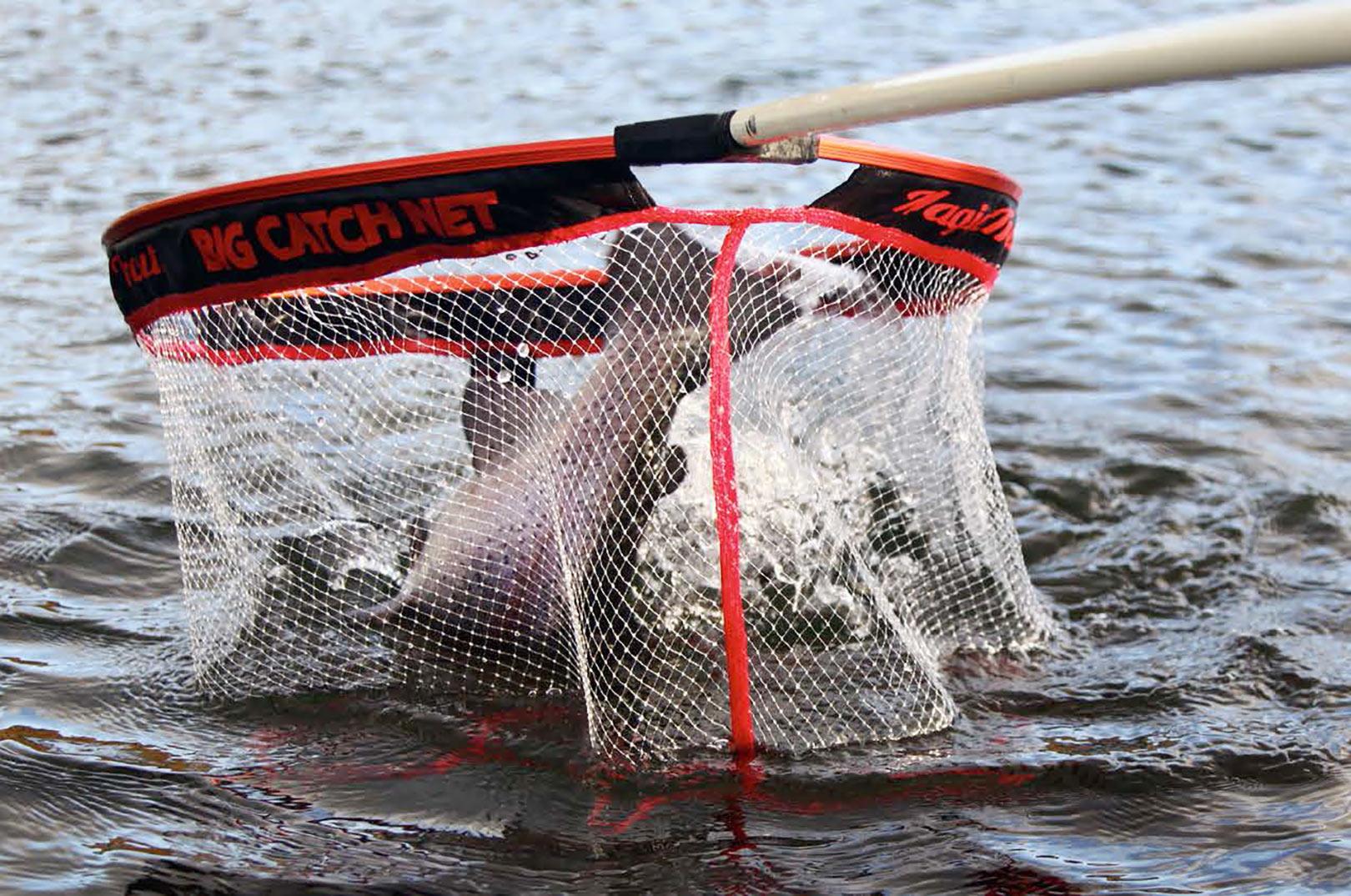 """Der fiskes med tynde forfang og små kroge. Et godt langskaftet landingsnet er derfor et """"must have"""". Det giver simpelthen flere fisk på den lange bane, så sørg for at købe et kvalitets net."""