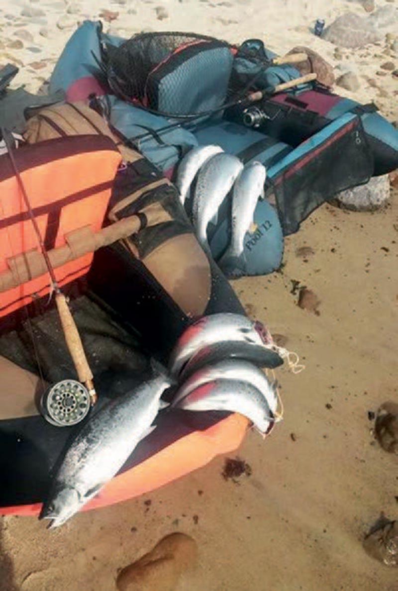 Et godt drev på Bornholm med min ven Jack på dagen lige efter en storm. Alle inde på land fik intet, mens vi sad derude og plukkede den ene efter den anden. Tilsammen fik vi nok over 30 fisk!