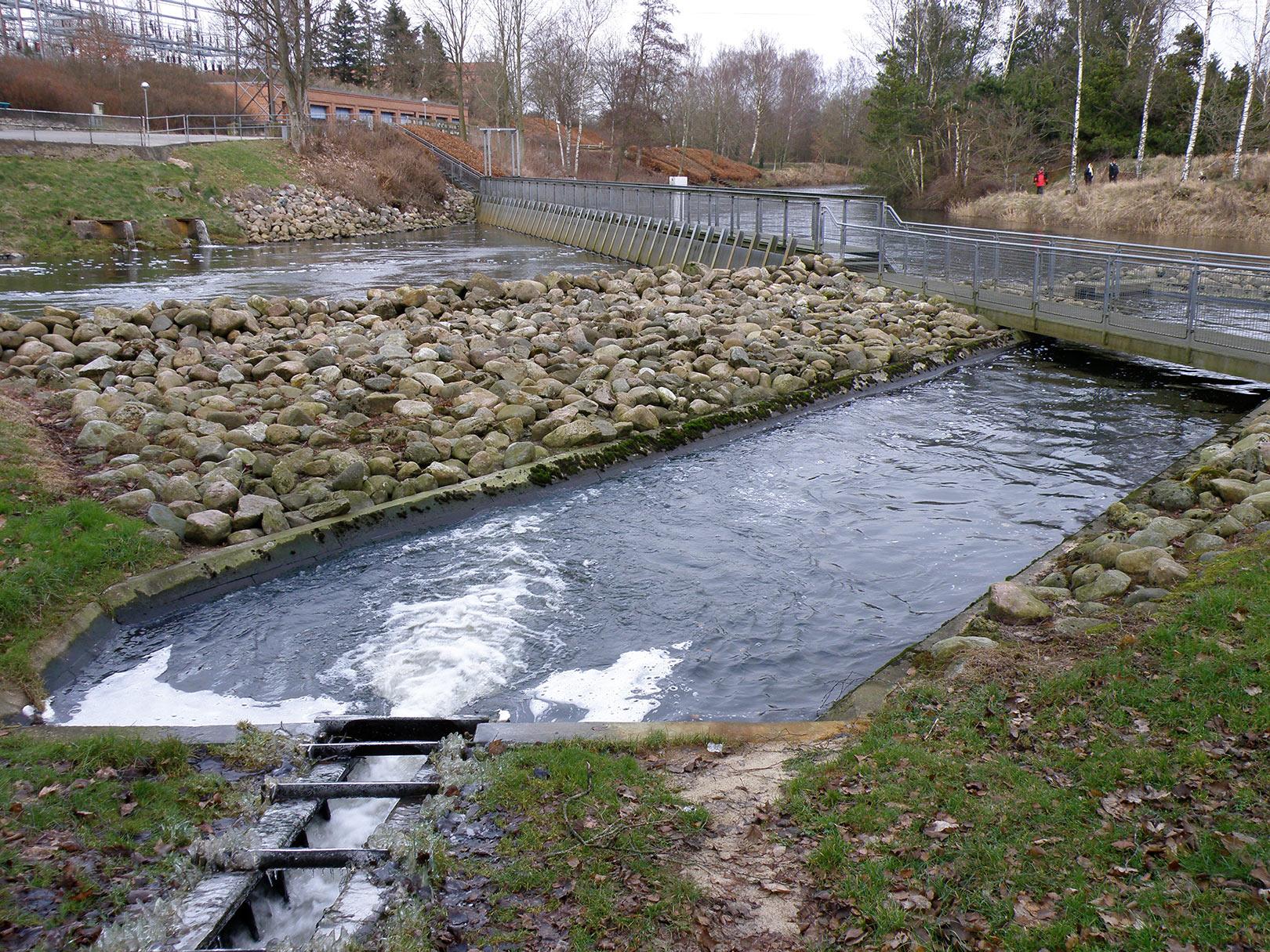 Det sidste af bassinerne i fisketrappen ved Tangeværket.