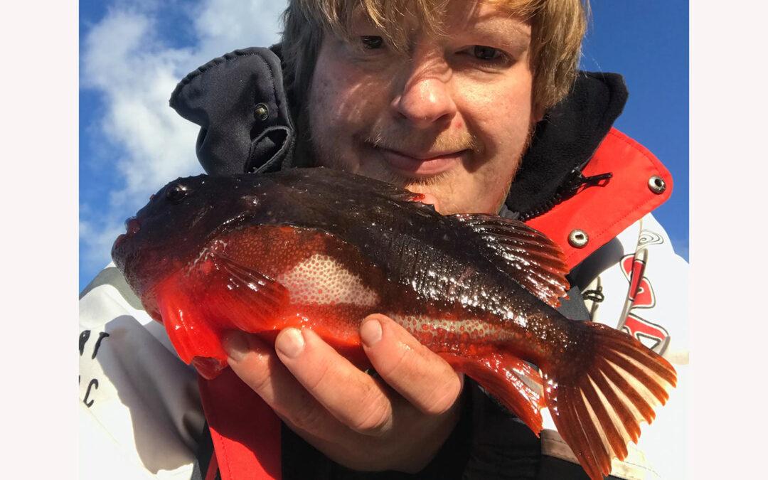 Mark Hemmingsen med sin fine stenbider taget på målrettet fiskeri med regnorm.