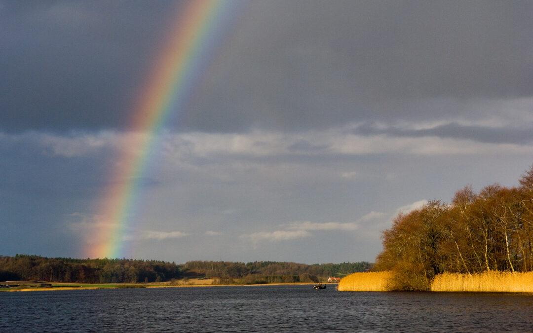 Tange Sø har så afgjort en landskabelige værdi, som dog på ingen måde opvejer den værdi et frit og naturligt løb af Gudenåen vil have for hele Danmark.