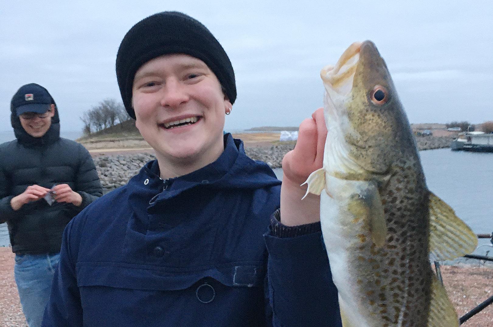 Liv og glade torskedage i Nordhanven, som er en del af Københavns Havn.