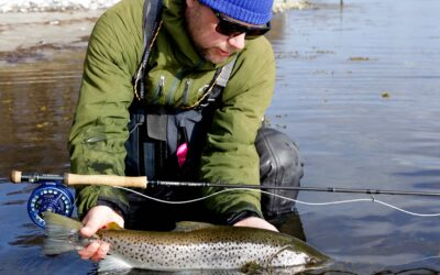 FISK & FRI TESTER G. LOOMIS NRX +