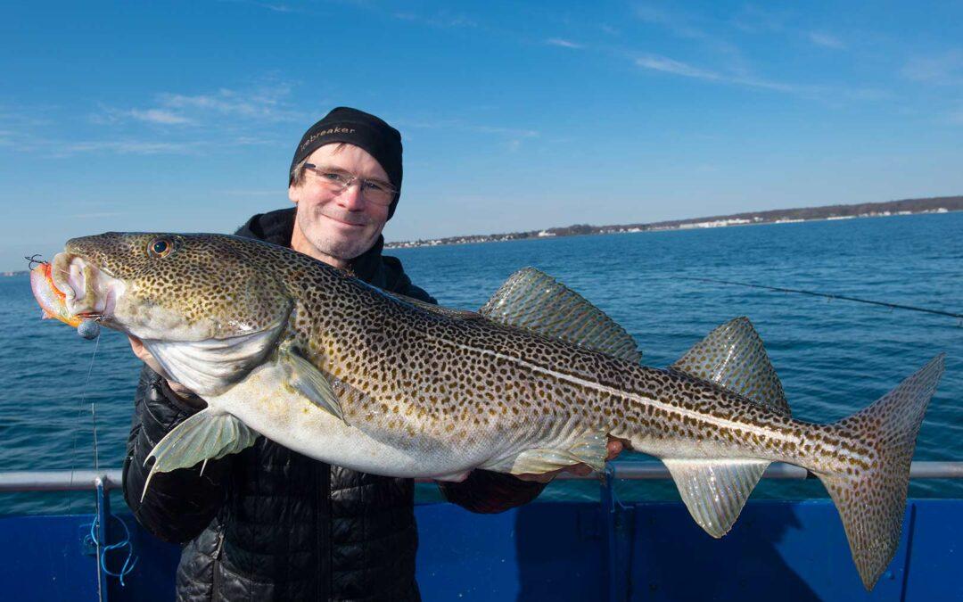Jens Bursell med sin flotte torsk fra Øresund