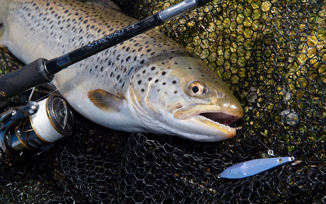 De nye Shimano Lunamis stænger er en nydelse at fiske og fighte fisk med.