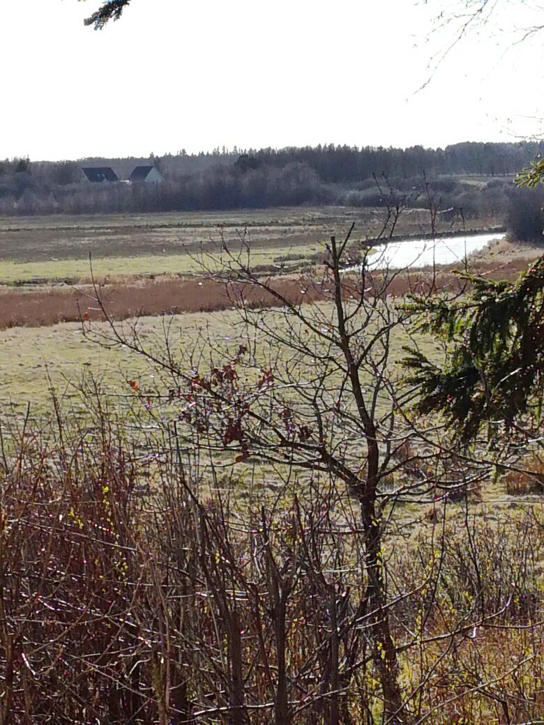 Her kan du se udsigten over Karup Å direkte fra huset.