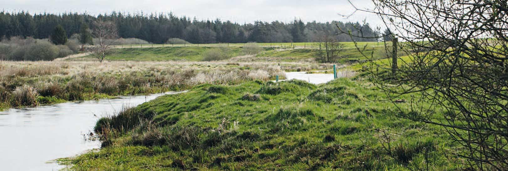 Grindsted Å på Mølby Eg-strækket. En skøn å, der slynger sig i landskabet, hvor der er højt til himlen.