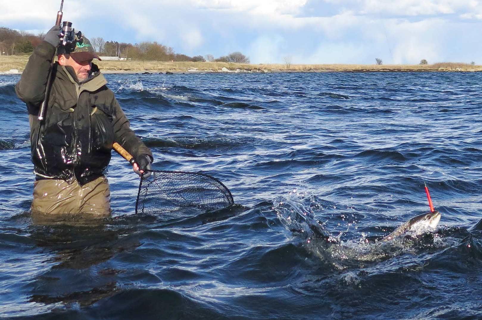 Uden fastspolehjulet ville kystfiskeriet i Danmark næppe have fået den store udbredelse, som det har idag. Grejhandlerne burde sende en venlig tanke til Illingworth.