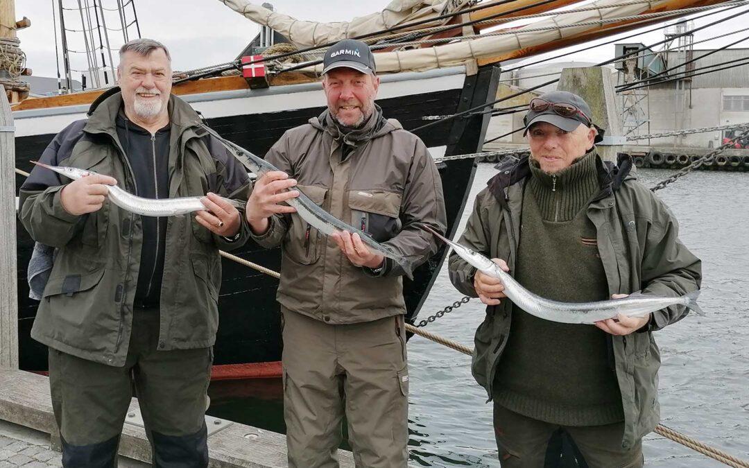 Vinderne af hornfiskekonkurrencen på Naksskov Sportsfiskerforenings årlige hornfisketur.