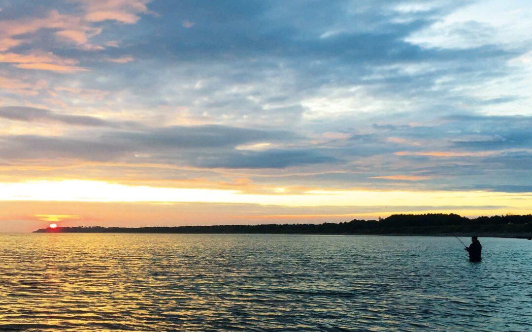 Mange stræk i Sejerø Bugtenegner sig glimrende til nattefiskeri i den kommede tid.