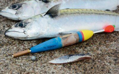 HAVFISKERI: LOK FISKENE TIL DIN AGN