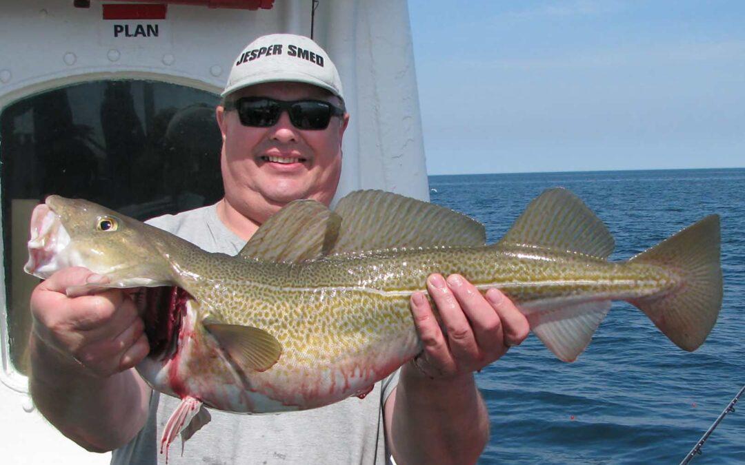 Jesper Smed med en af sine fine torsk fra Det Gule Rev