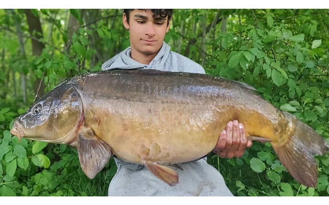 Mark Hestbæk med sin flotte 15 kilos karpe fra et stort offentligt vand.