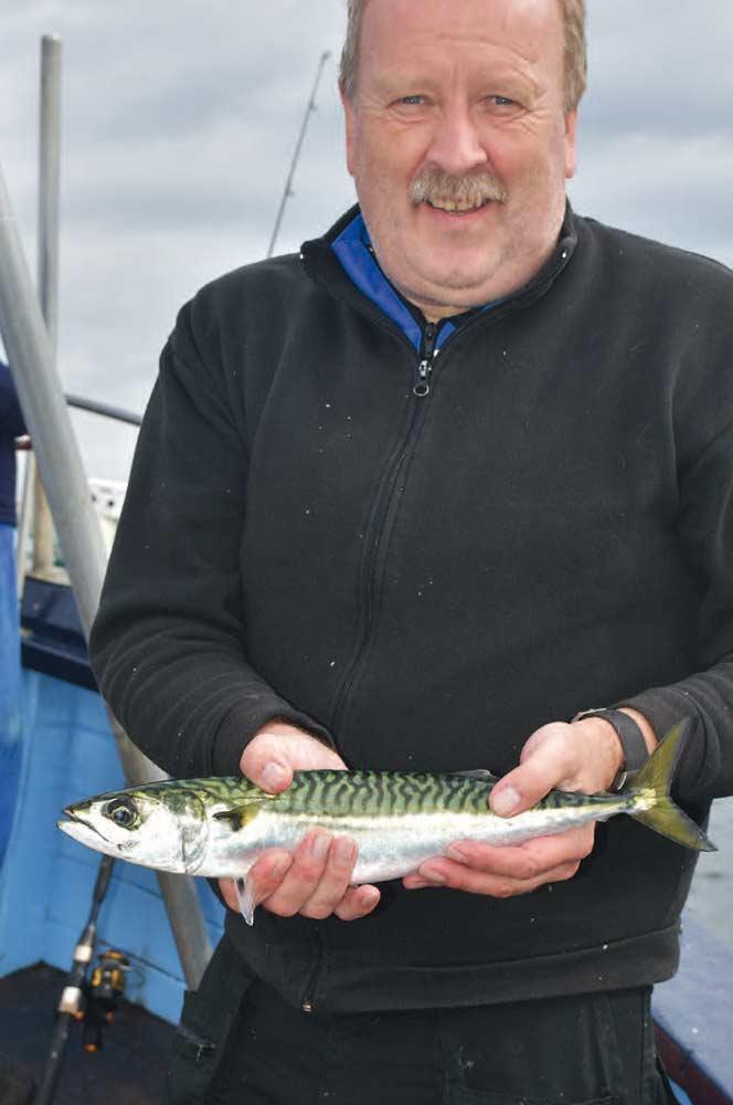 Flådemede efter makreller er en både underholdende og effektiv måde at fiske på.