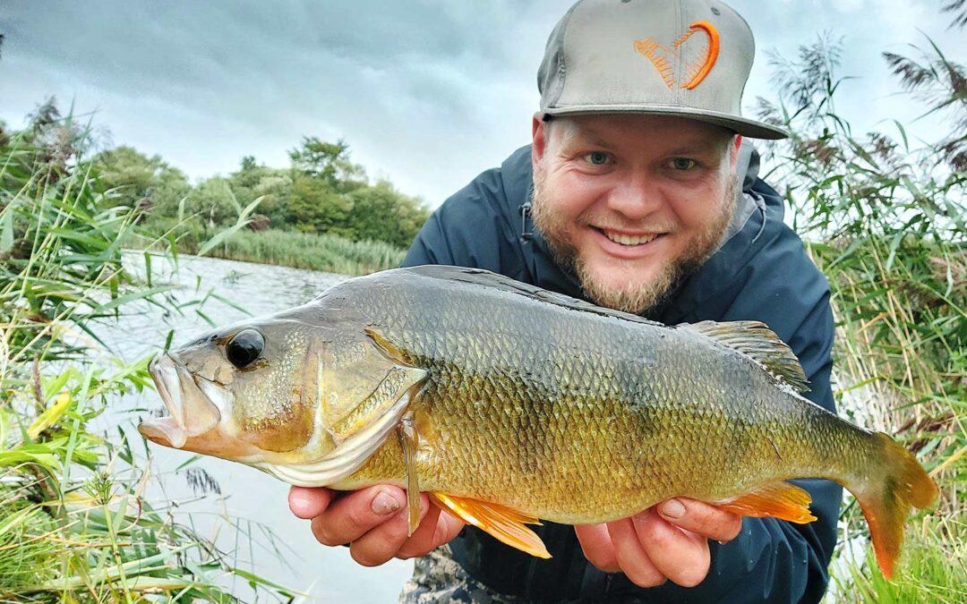 Mads Davidsen med 50 cm aborren fra sin barndoms sø.