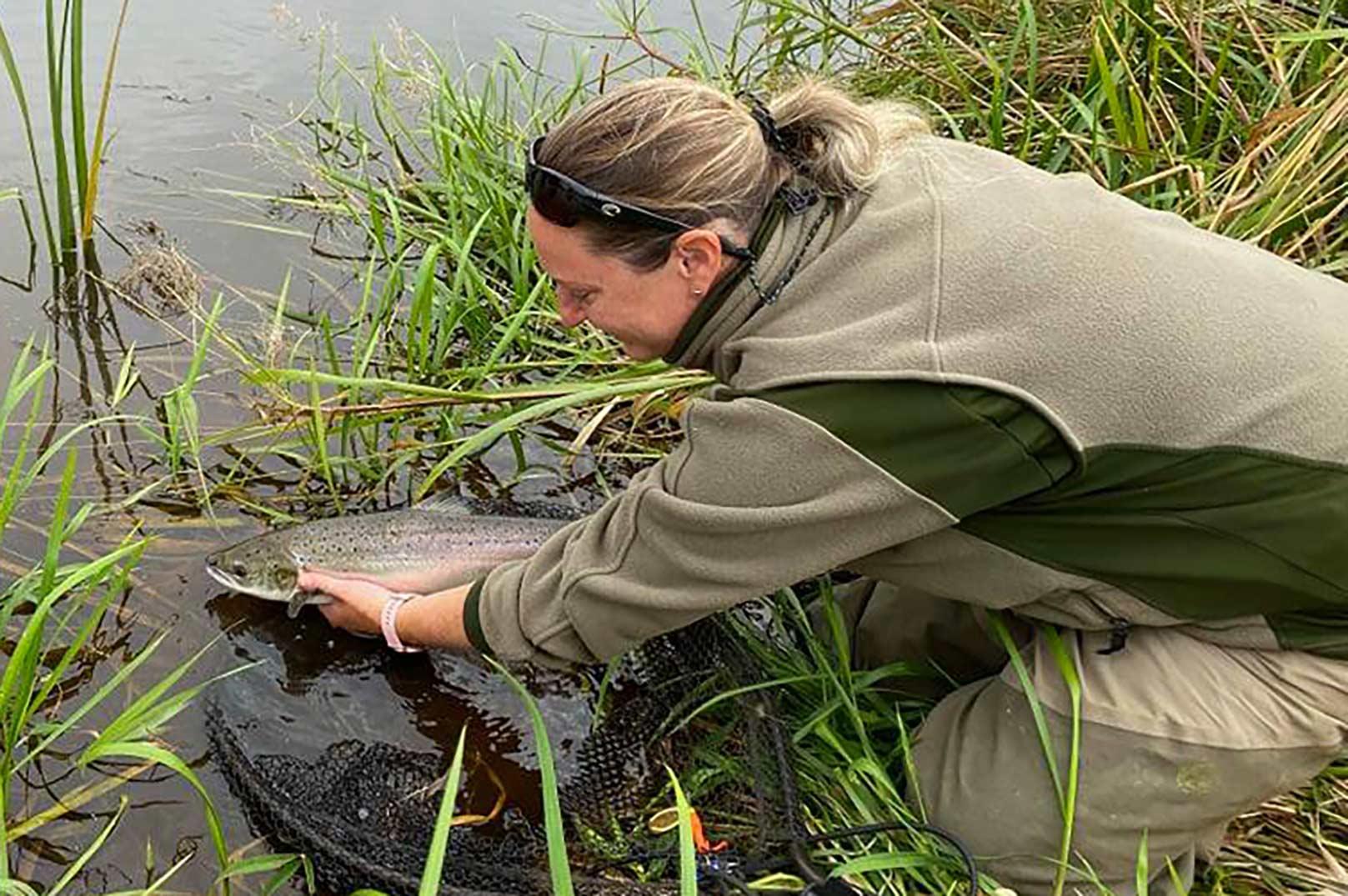 På arrangementet kan du bl.a. møde lakseeksperten Senja Furbo, der deler ud af sin store viden om fiskeriet i åen.