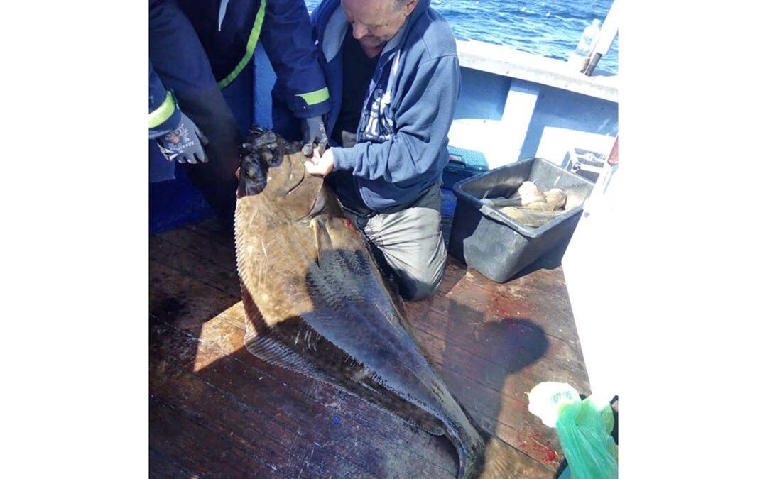 Jyrgen med sin 34 kilos helleflynder, der er bådrekord på Muddi