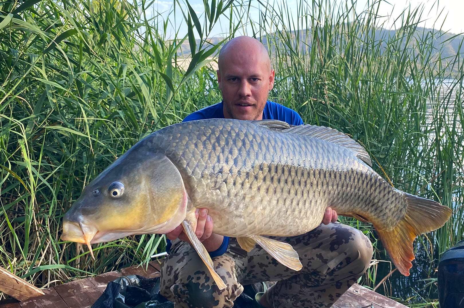 Ebro-floden i det nordøstlige Spanien byder på et fantastisk fiskeri efter ikke blot kæmpemaller - men også flotte skælkarper som denne på 15,9 til Mark Buch Jørgensen.