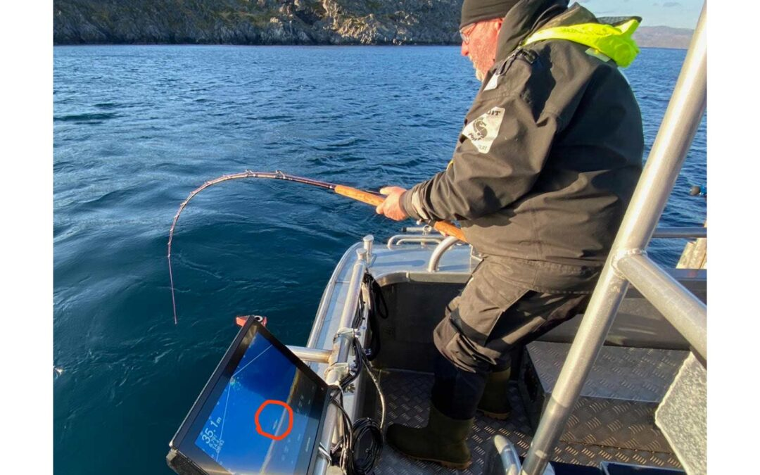 Sightfiskeri efter helleflynder med Panoptix er ikke for sarte sjæle, og du bliver spændt godt for, når først den sidder der.