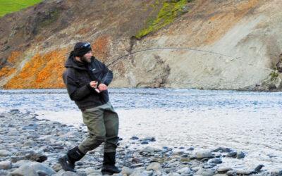 STORA LAXA – ISLANDSK LAKSEFISKERI I VERDENSKLASSE